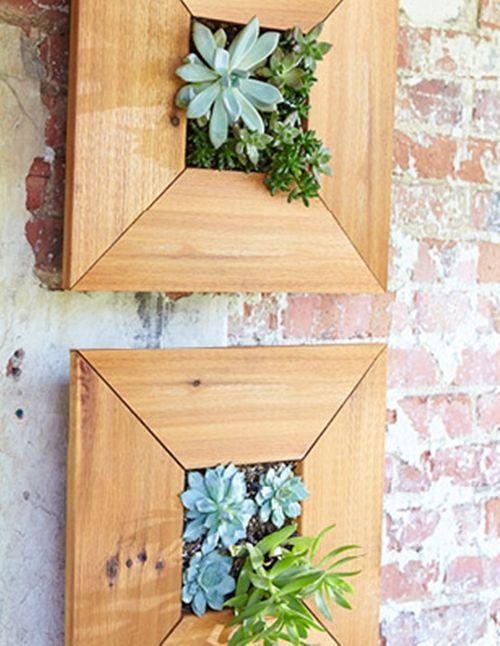 Decorar terrazas pequeñas mini jardín vertical de plantas crasas 10 - decoracion de terrazas con plantas