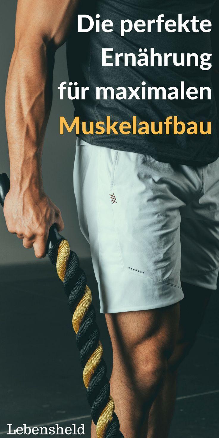 Schneller Muskelaufbau-die richtige Ernährung in 2020