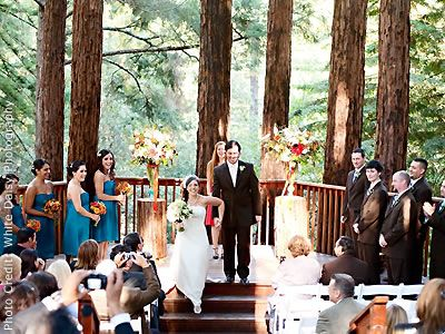 Amphitheatre Of The Redwoods At Pema Osel Ling South Bay Wedding Location 96076 Santa Cruz