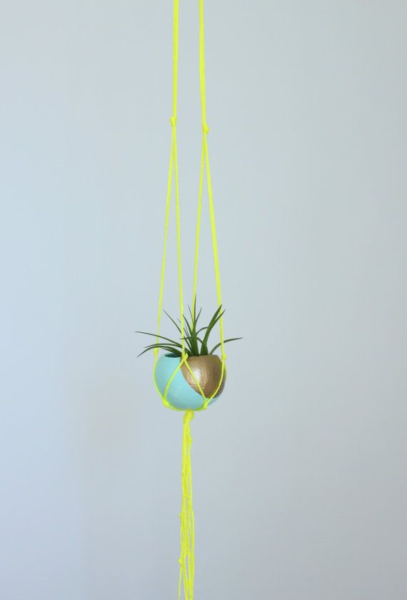 Macrame Air Plant Hanging Planter With By Thriftedandmade On Etsy Hanging Planters Air Plants Plants
