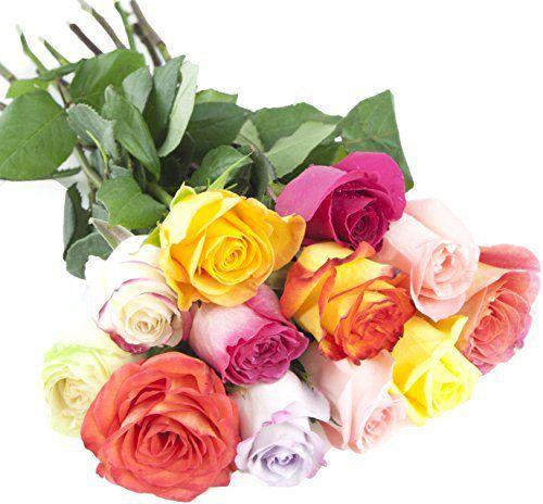 Bouquet of Long Stemmed Rainbow Roses (Dozen) - Without Vase - http://flowersnhoney.com/bouquet-of-long-stemmed-rainbow-roses-dozen-without-vase/