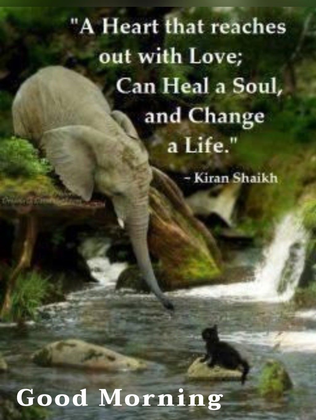 Pin By Adella Hall On From Me To You Elephant Quotes Morning Inspirational Quotes Good Morning Quotes