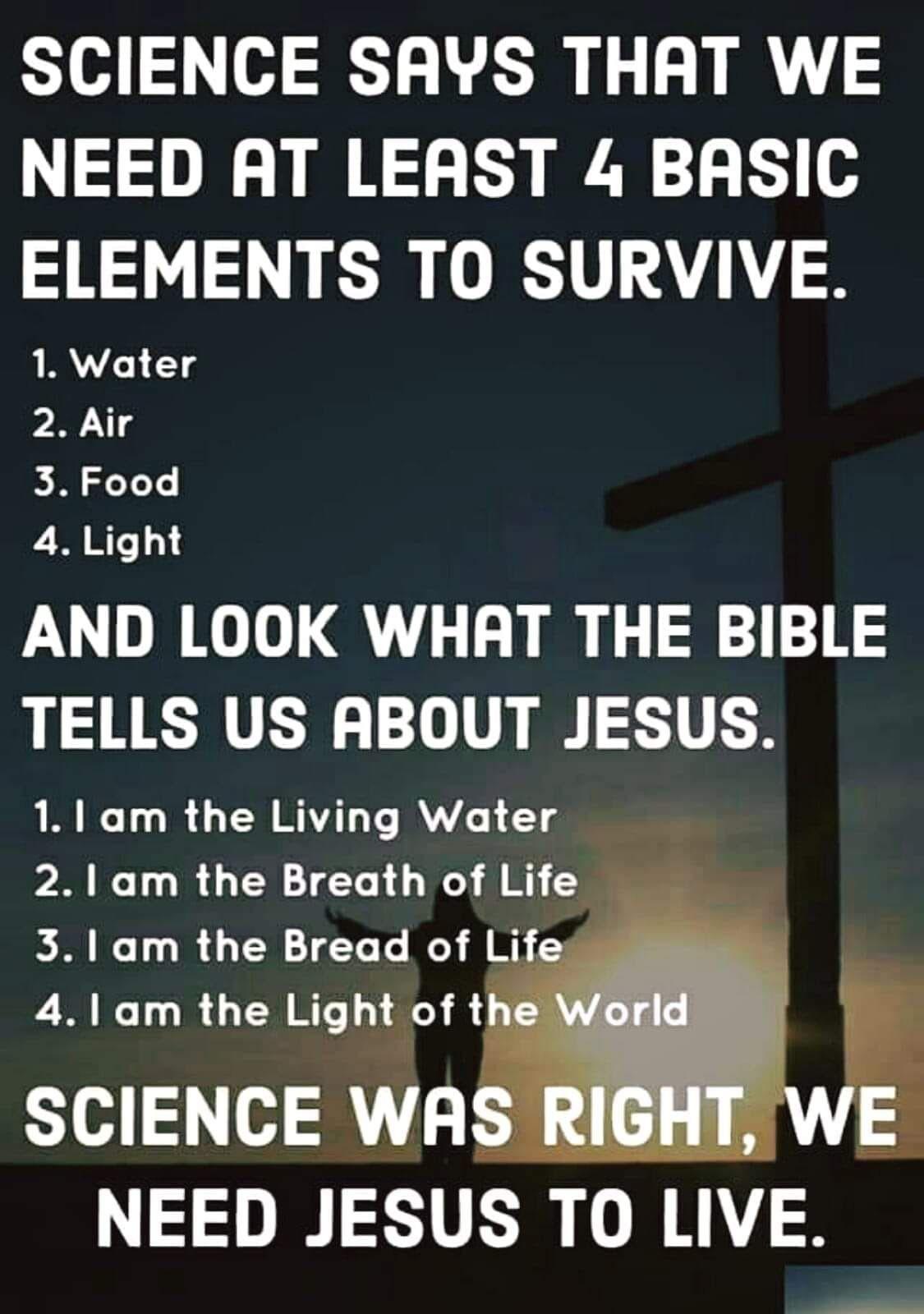 5 elements to survive = Jesus  Jesus christ quotes, Christ quotes