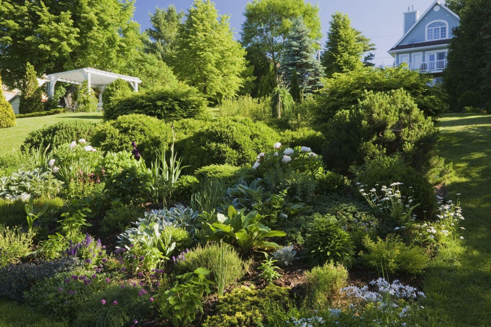 fresh new ways to landscape your yard garden borders gardens