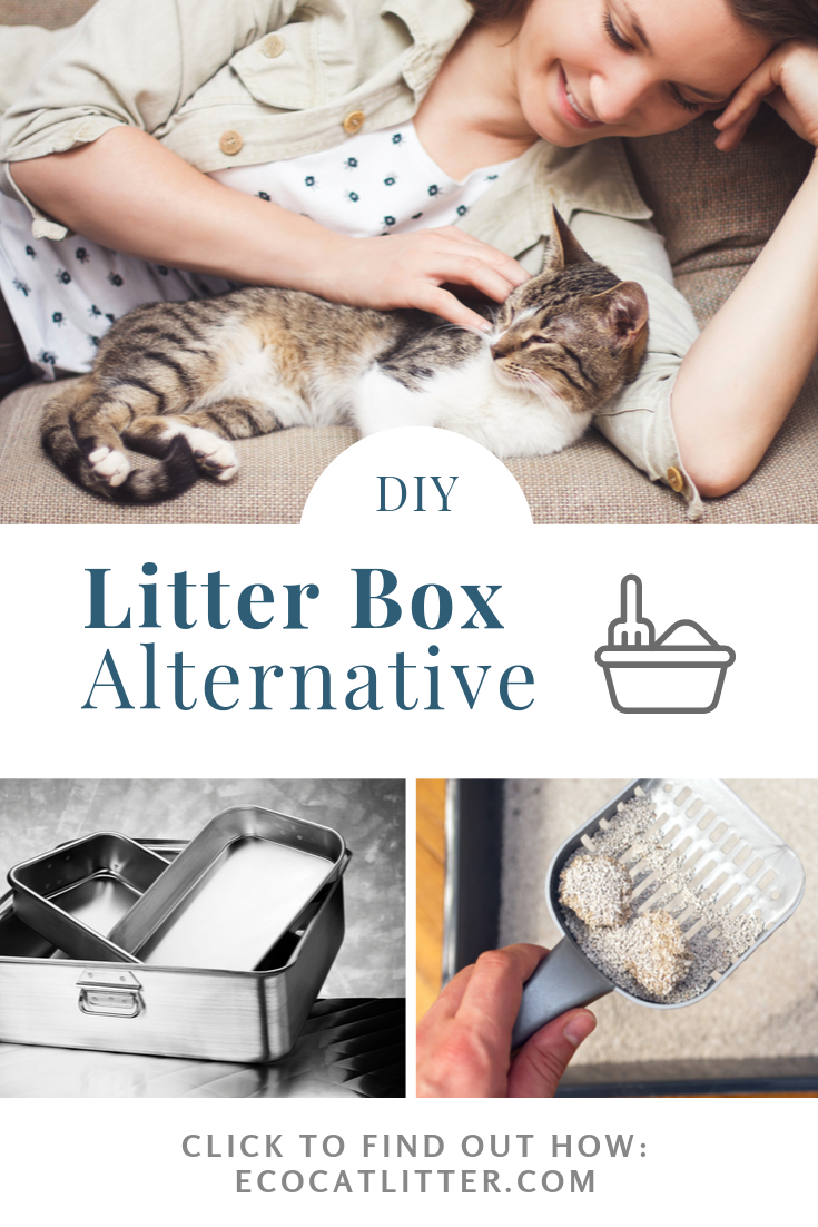Eco Friendly Litter Box Sustainable Metal And Bamboo Cat Litter Pans Diy Litter Box Litter Box Litter