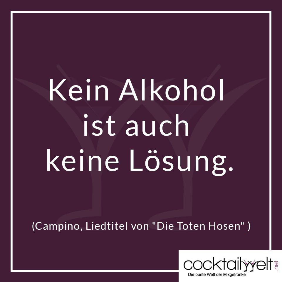 Kein Alkohol Ist Auch Keine Losung Zitate Spruche Zitate Spruche