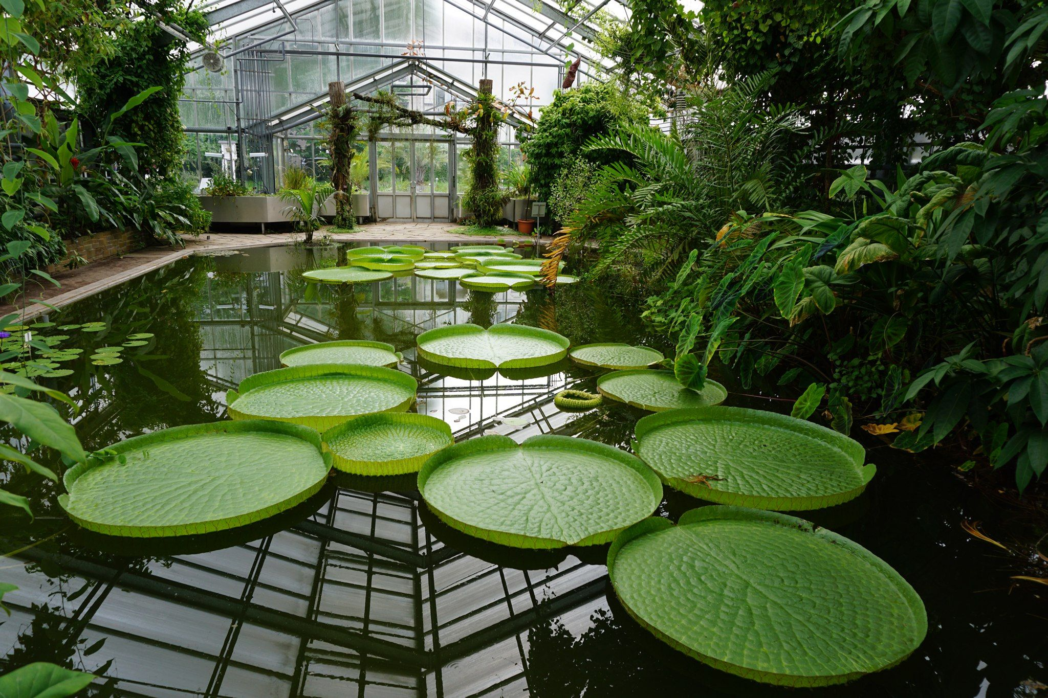 Schonster Botanischer Garten Nrw Designer Verwenden In Ihrem Eigenen Haus Von Botanischer Garten Nrw H Outdoor Decor Outdoor Furniture Sets Outdoor Furniture