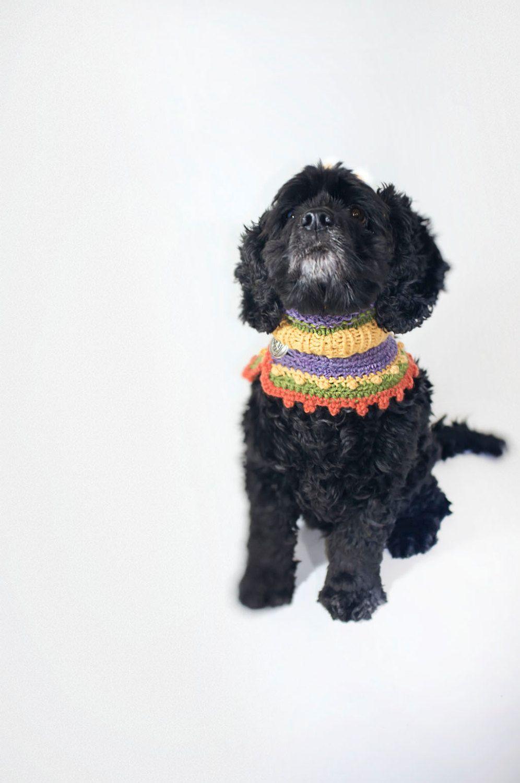 Hippie Hunde Halsschmuck aus reiner Wolle , \
