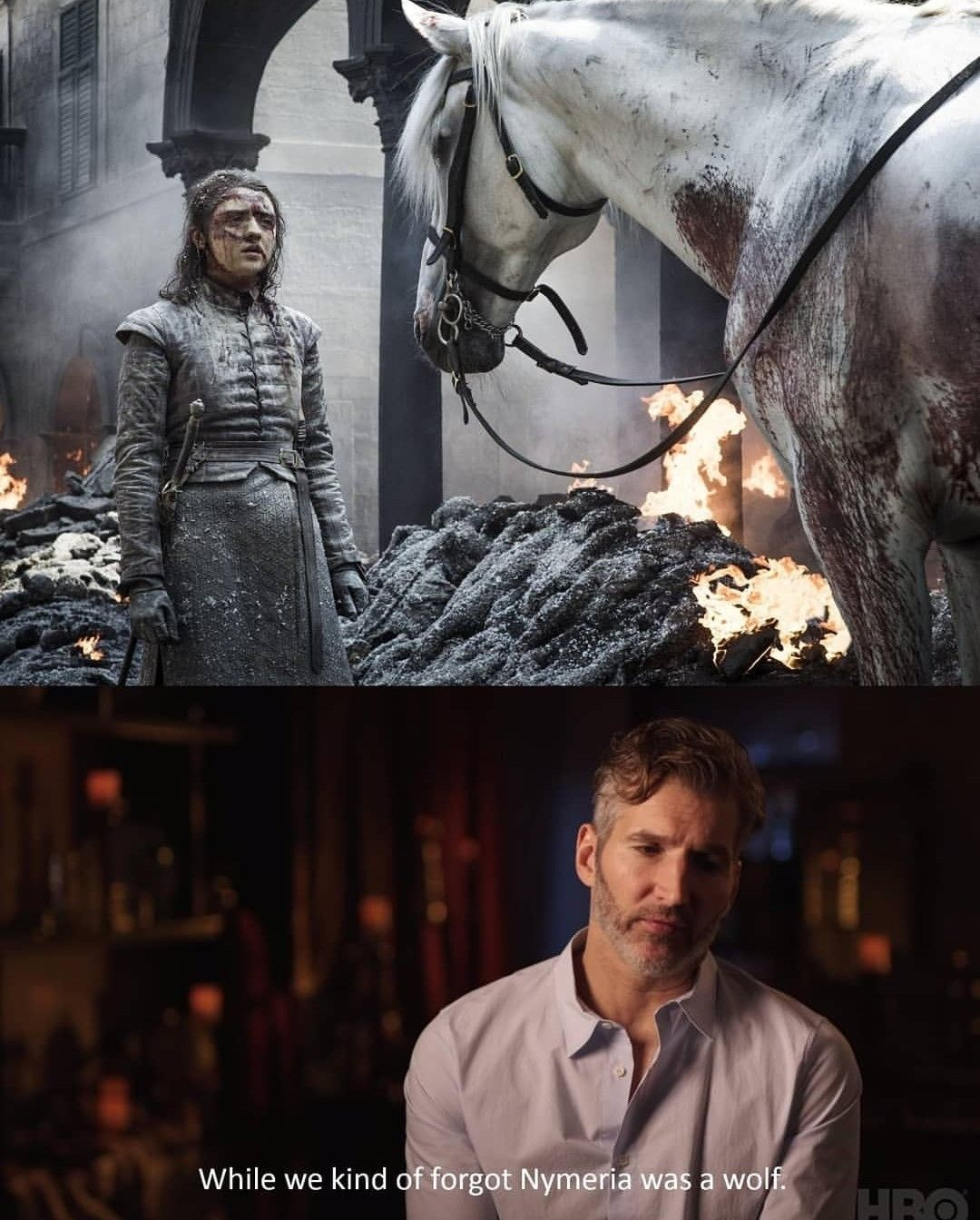 Pin by 🦄 Thug Unicorn 🦄 on Game Of Thrones Memes, Got
