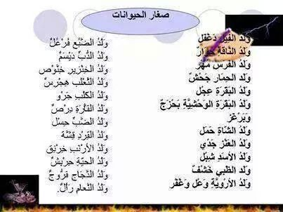 Pin By Safia Almahjoobi On لغتي هويتي Learning Arabic Words Learning