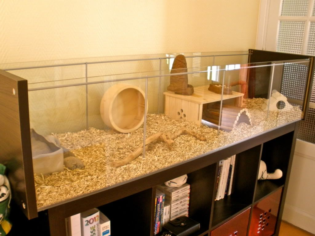 Ikea hack for hamster habitat could also be hacked for a for Ikea hamster cage