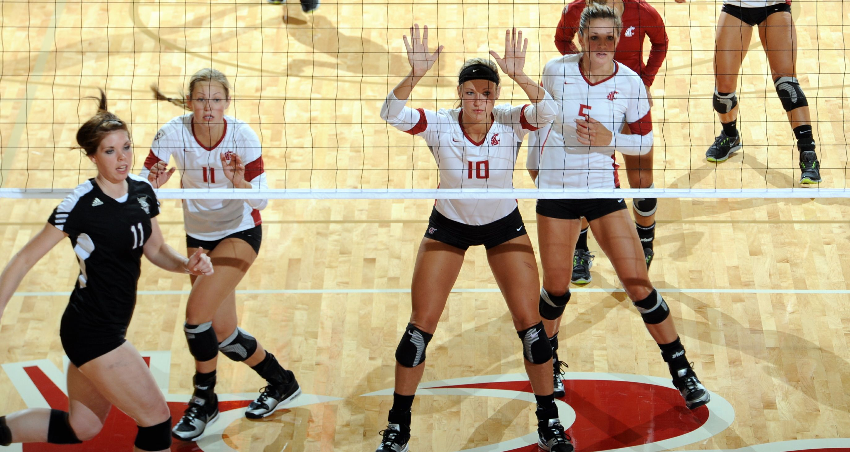 Wsu Volleyball Takes 10 2 Record To No 5 Uw For Tuesday Tv Match Gocougs Washington State Cougars Sports Volleyball