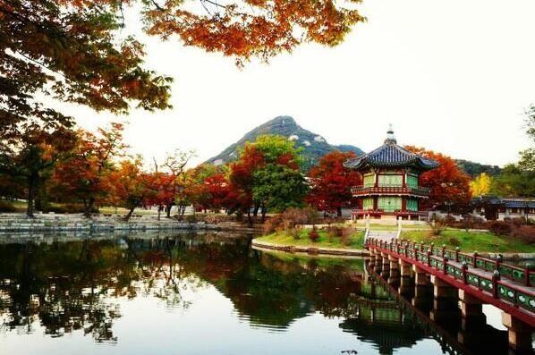 Twitter / Kor_Visitkorea: 목모닝:) 경복궁의 가을, ...