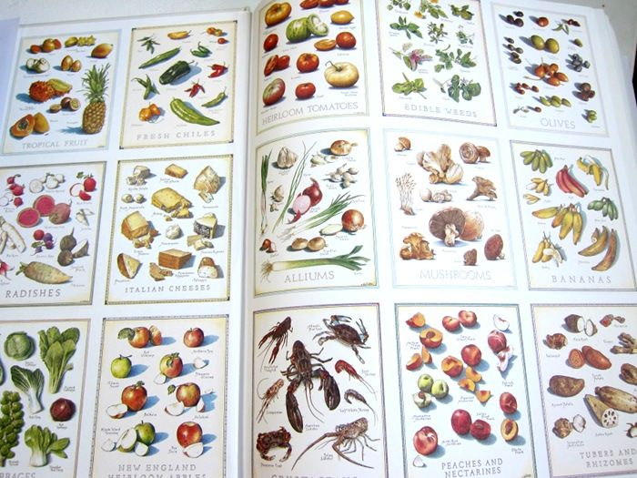Pin On Illustrated Recipes