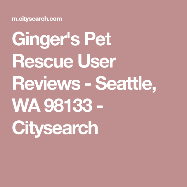 Ginger S Pet Rescue User Reviews Seattle Wa 98133 Citysearch Animal Rescue Rescue Pets