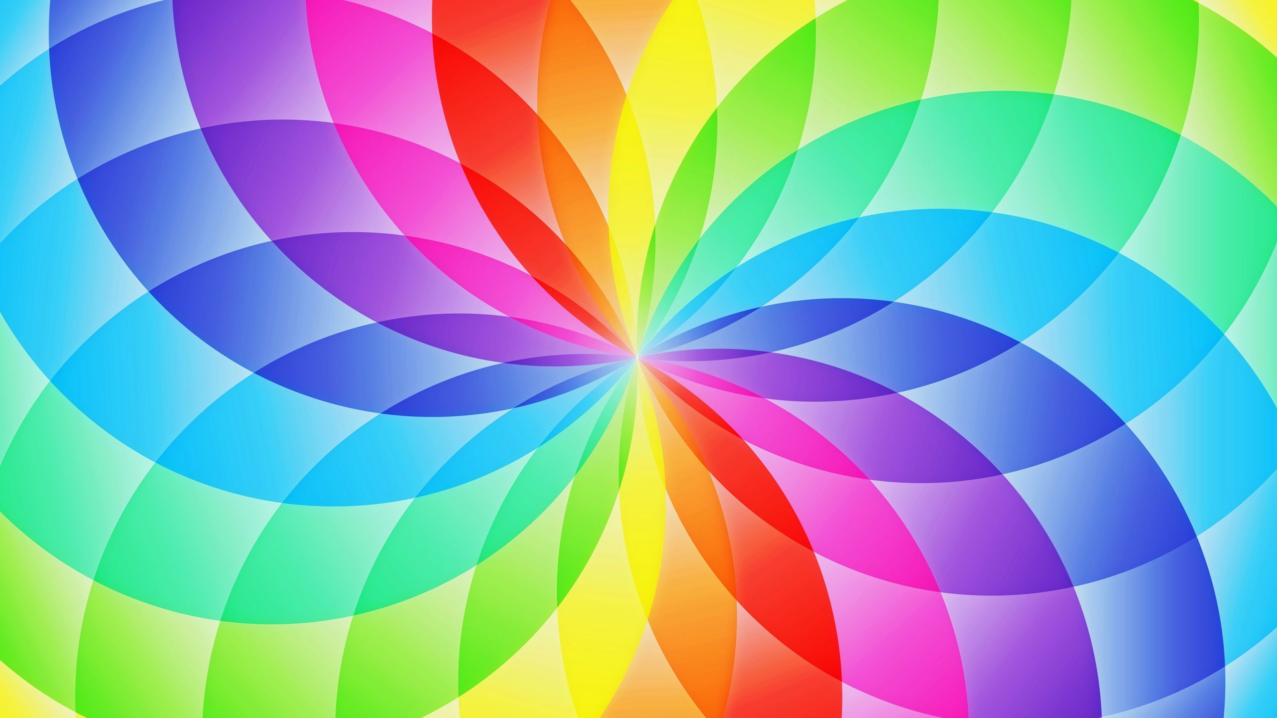 Abstract Design Circle Sector Flower Rainbow Wallpaper 2560x1440 Great For Paper Breads Rainbow Wallpaper Pink Unicorn Wallpaper Unicorn Wallpaper