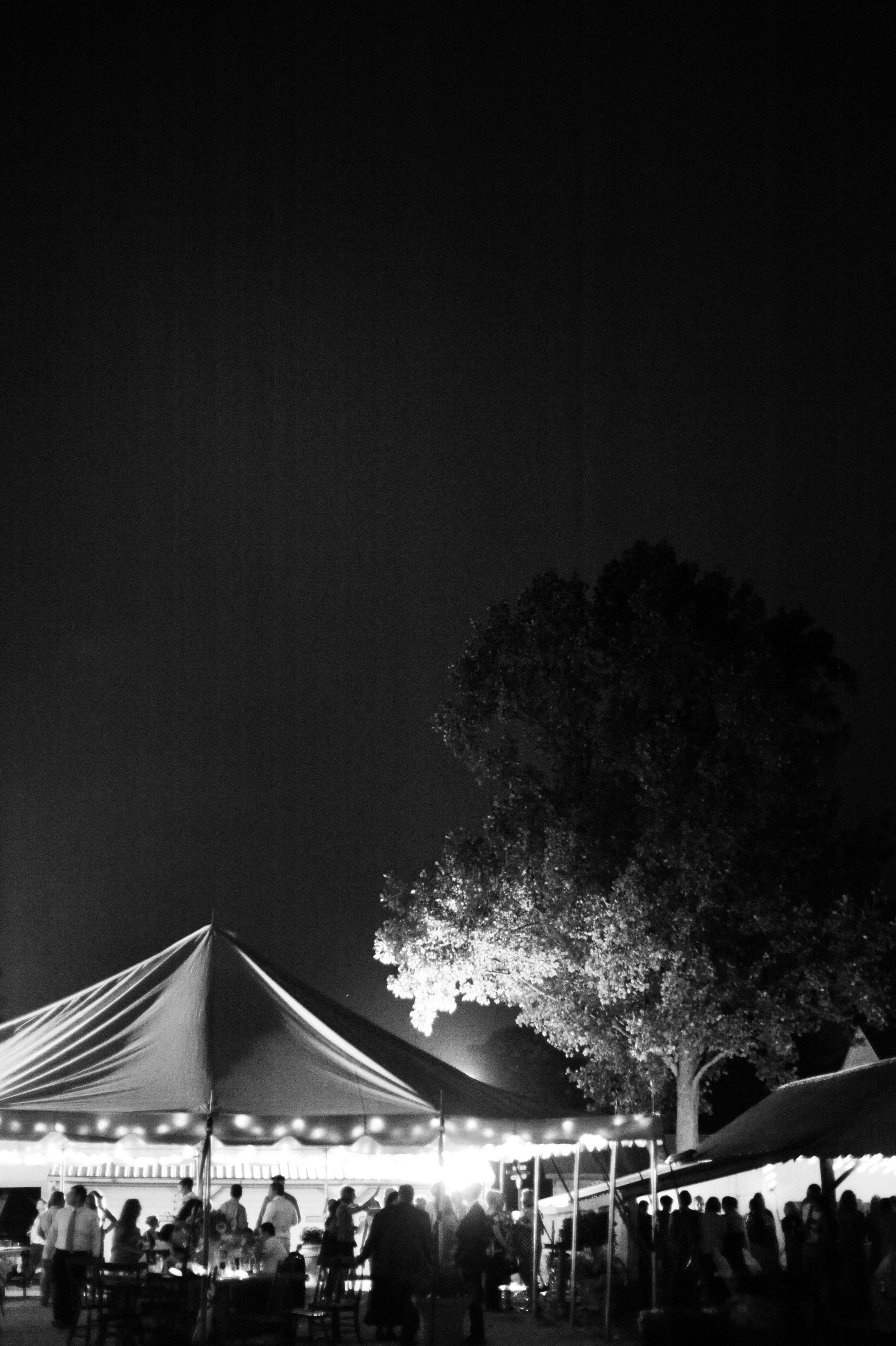 Jorgensen Farms At Night Thank You Sarah Warda Photography Enchanted Forest Wedding Forest Wedding Farm