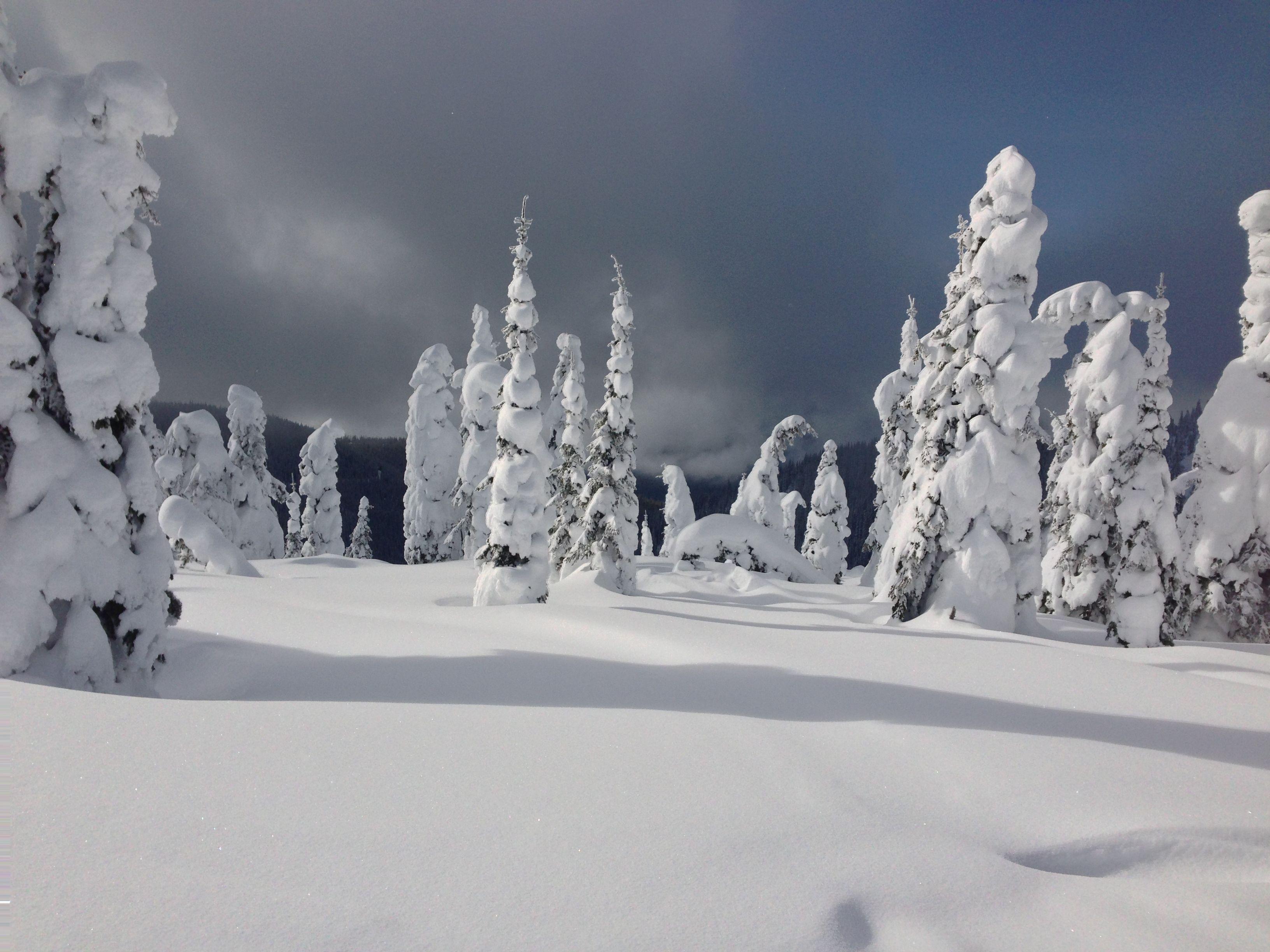 Frozen giants near Kalispell Montana | Montana | Montana