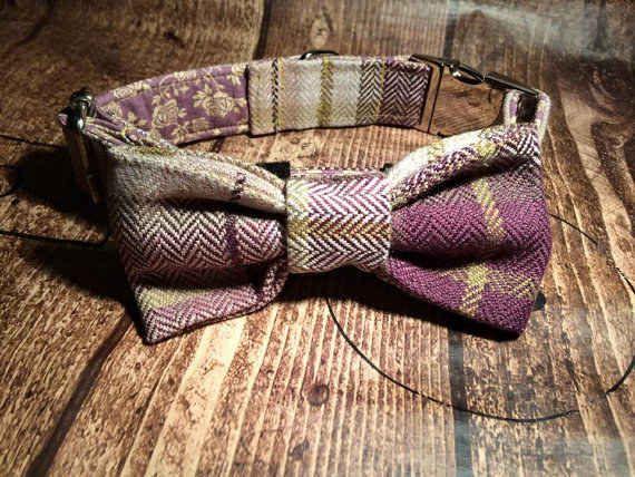 Top Dog Collar Bow Adorable Dog - 75754760e054ff241d0a90c61c354300  Pic_184711  .jpg