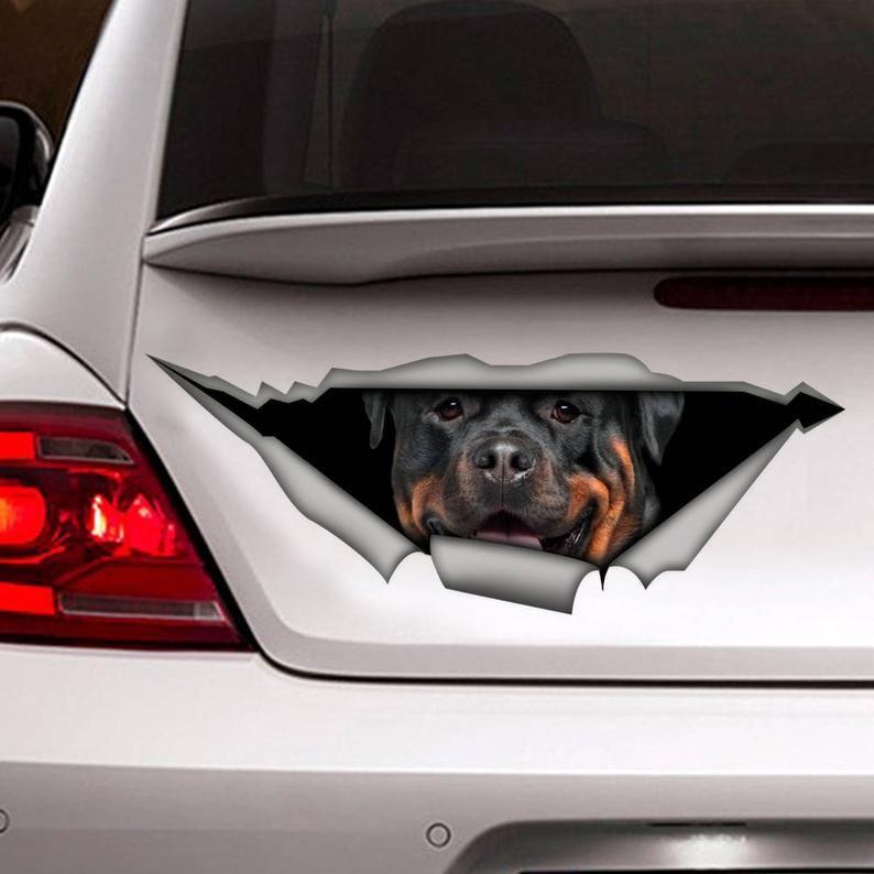 DECAL. Rottweiler car decal, Vinyl decal, car decoration