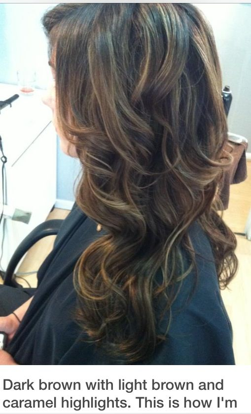 Natural Dark Brown Hair With Light Brown And Carmel Highlightsn