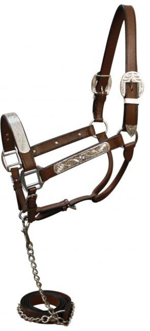 BILLY ROYAL SILVER SHOW HALTER STERLING OVERLAID FILLIGREE W/ LEAD GORGOUS!!! Pferde-Halfter Pferdeausstattung & Zubehör