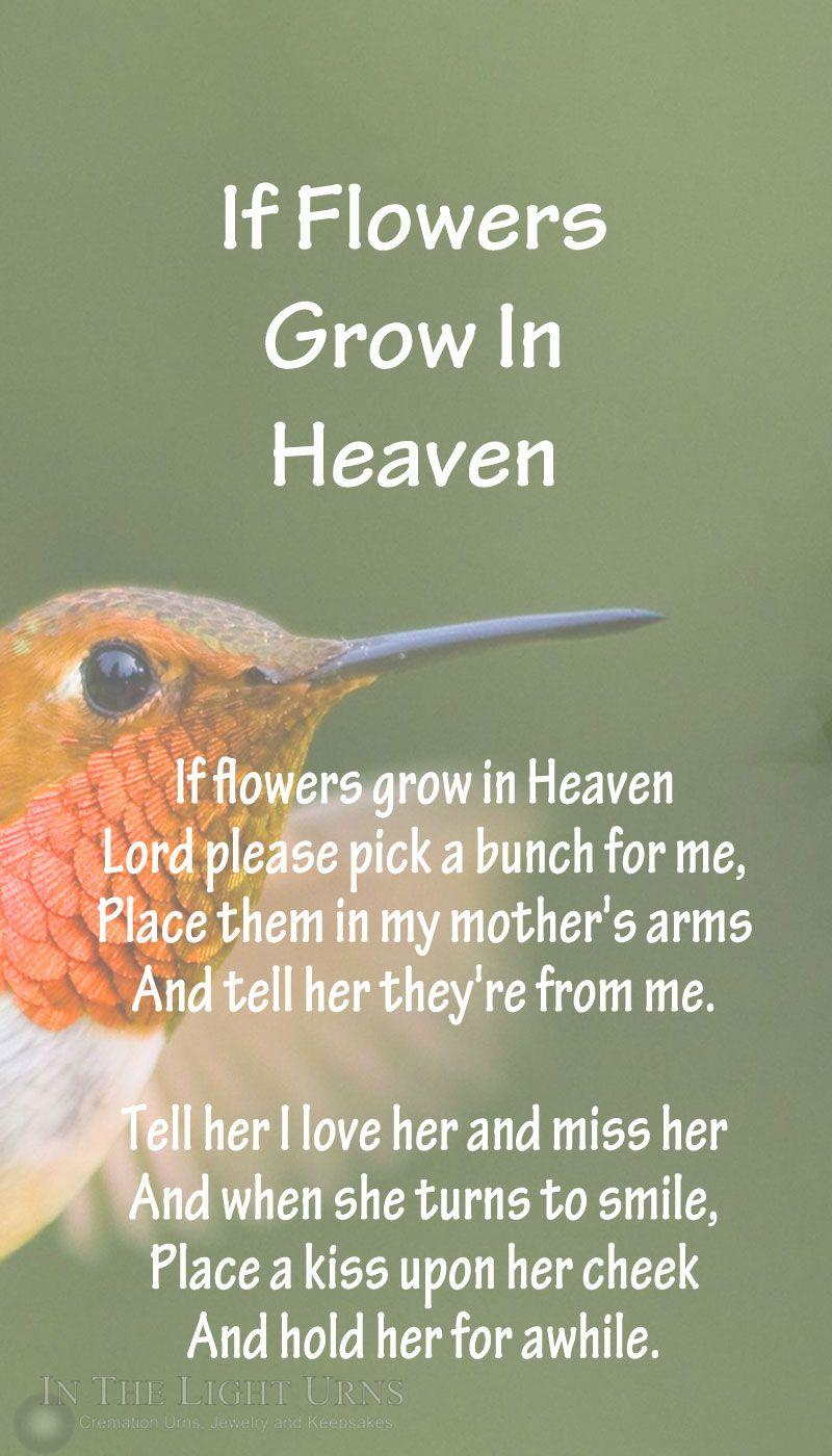 Hummingbird Poems 5