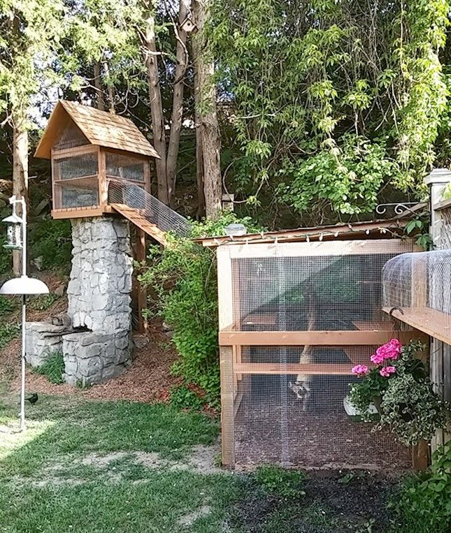 13 Cool Catios For Your Feline Friend Diy Cat Enclosure Outdoor Cat Enclosure Cat Enclosure
