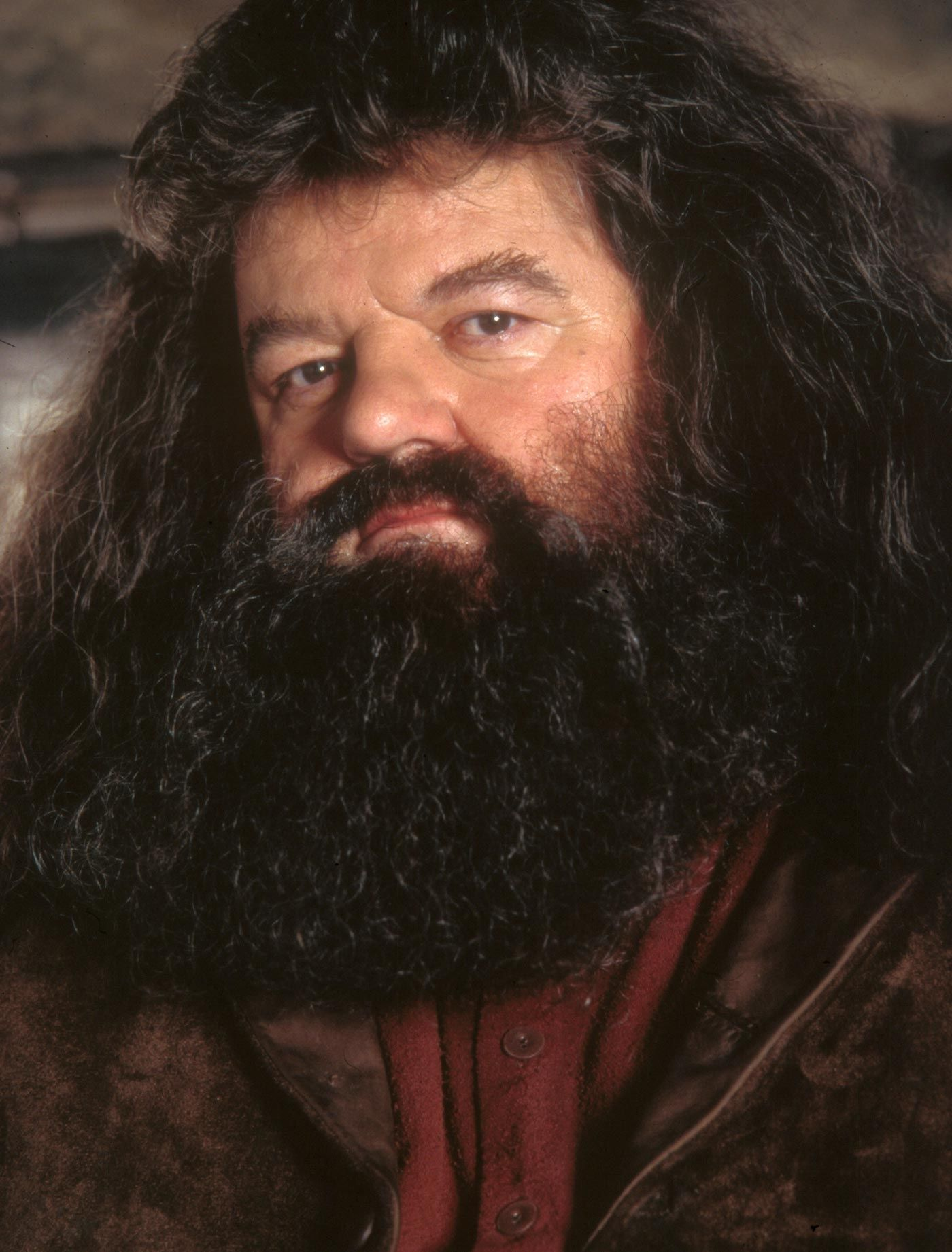 robbie coltrane as hagrid from harry potter movies i ve seen
