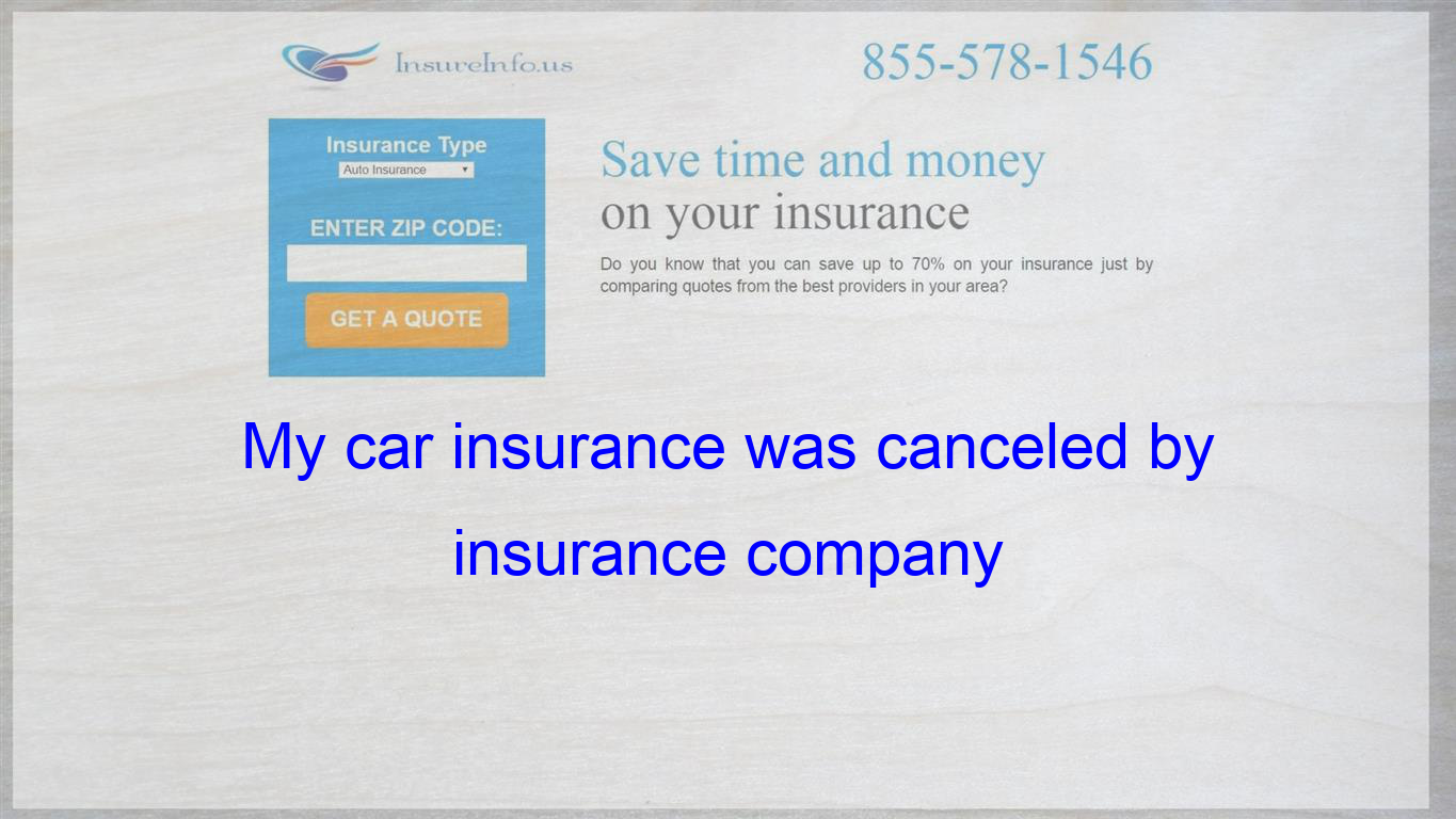 What Can I Do Now Cheap Car Insurance Insurance Quotes Auto