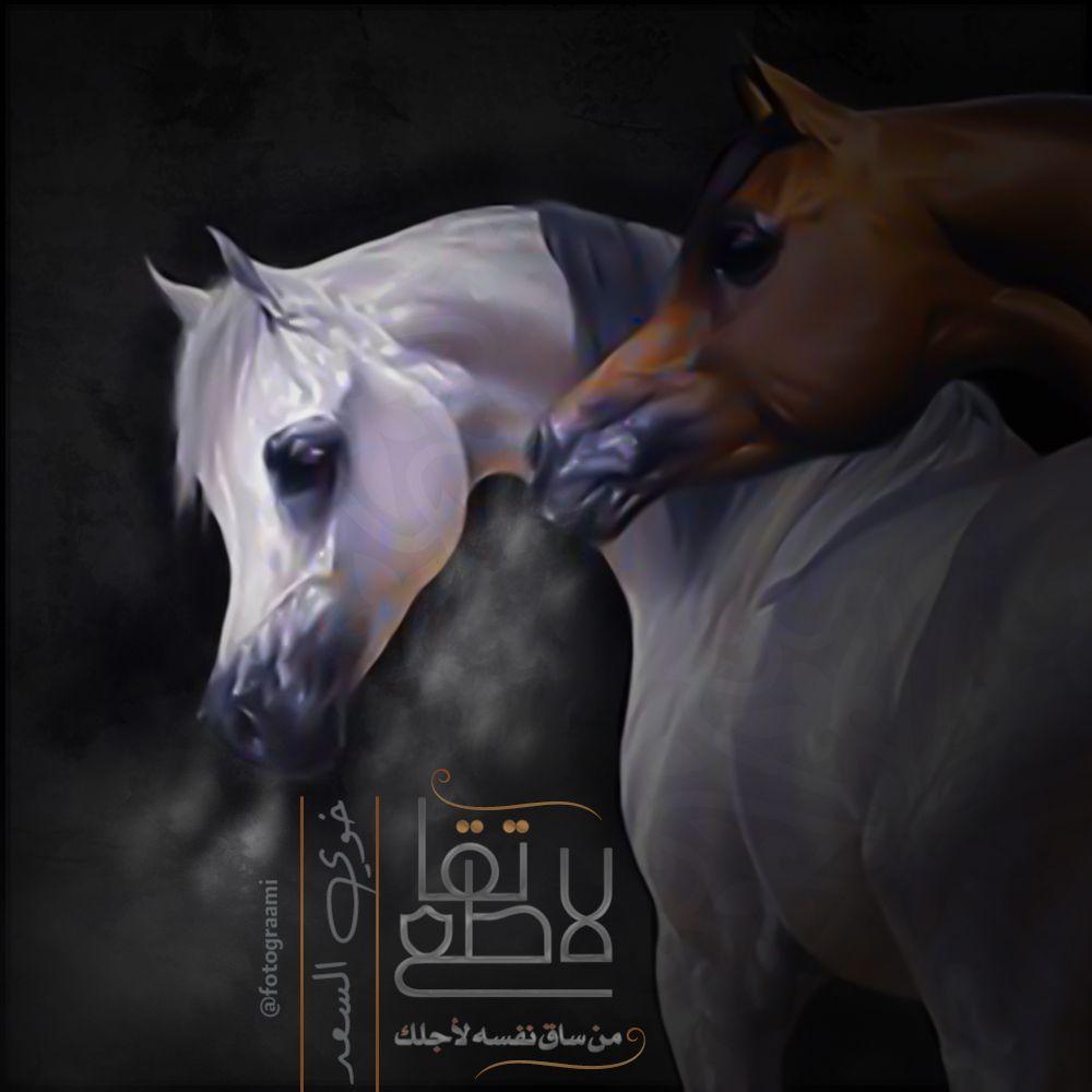 لا تقاطع خوي السعد Animals Horses Poster