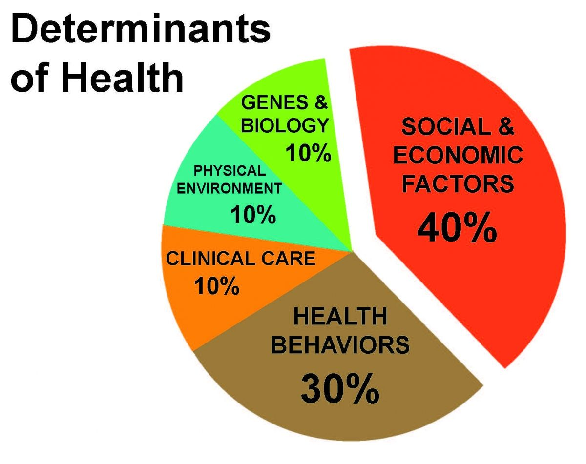 community based health population health model Google