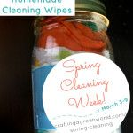 Homemade Cleaning Wipes to Disinfect Naturally