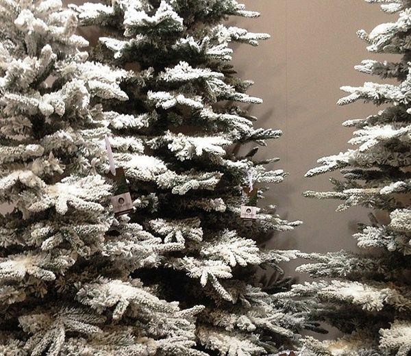 Everlands Snowy Alaskan Fir Christmas Tree   Christmas tree, Pine ...