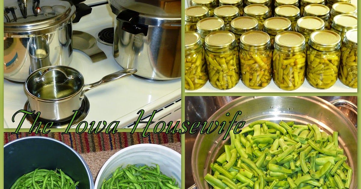 Home Canned Green Beans Food canning Canning