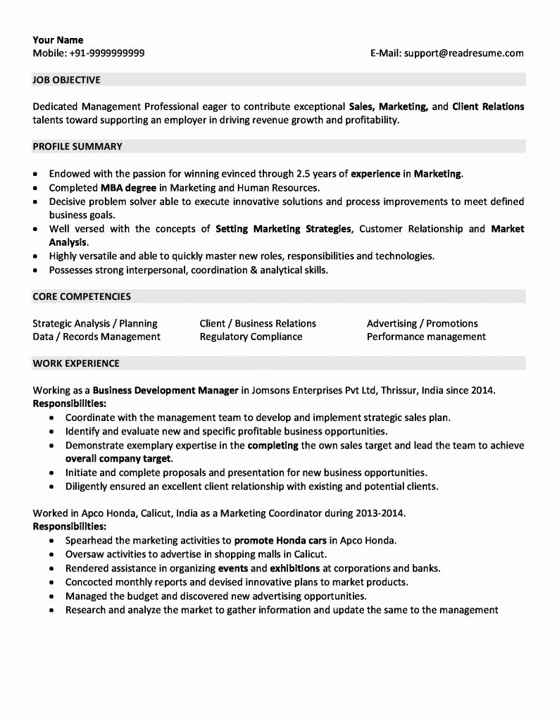 For 5 Years Experience In Marketing Marketing Resume Resume No