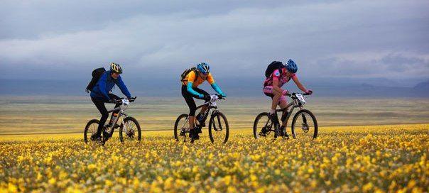 Radfahren im Burgenland in Österreich macht dank einiger toller Radhotels viel…