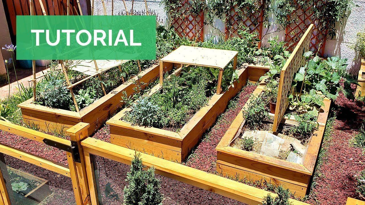 El Mejor Huerto Urbano Tan Solo En 1 Mes Crea Una Huerta En Casa Paso Huerto Urbano Huerto Urbano Vertical Huerto