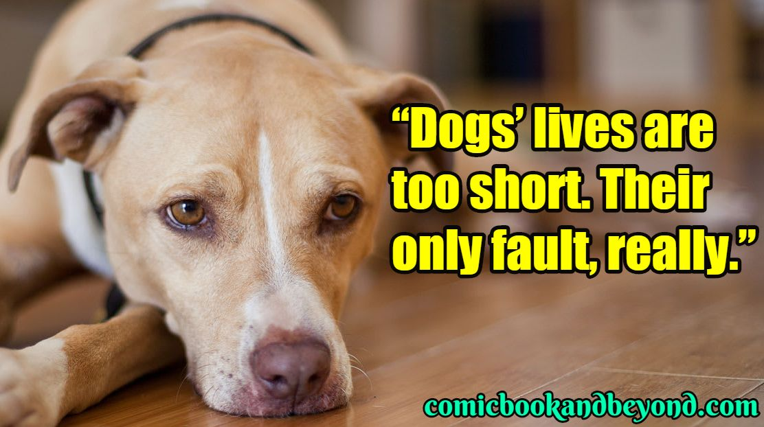 Follow Us To Get Your Daily Puppy Quote Fill Quotes Quoteoftheday Motivationalquotes Puppylove Pawprints Buck Puppy Quotes Dog Minding Dog Training