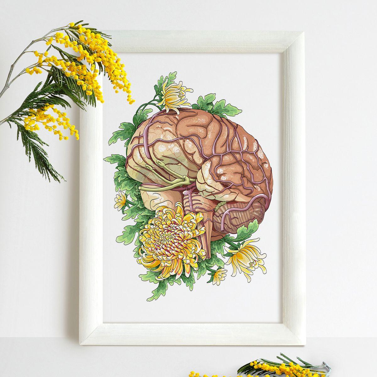 Brain with flowers | Brain anatomy, Brain and Anatomy