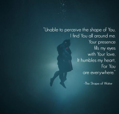 Calendar Quotes From The Shape Of Water : The shape of water quote what i ve learned from page