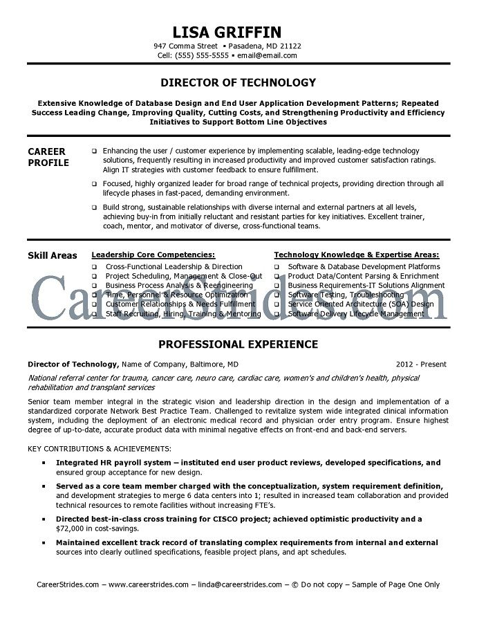 It Director Resume Sample Example Resume Resume Examples