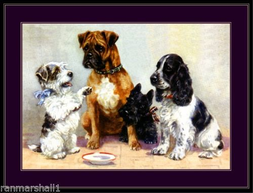 English-Picture-Scottish-Terrier-Boxer-Cocker-Spaniel-Dogs-Dog-Puppy-Art-Poster