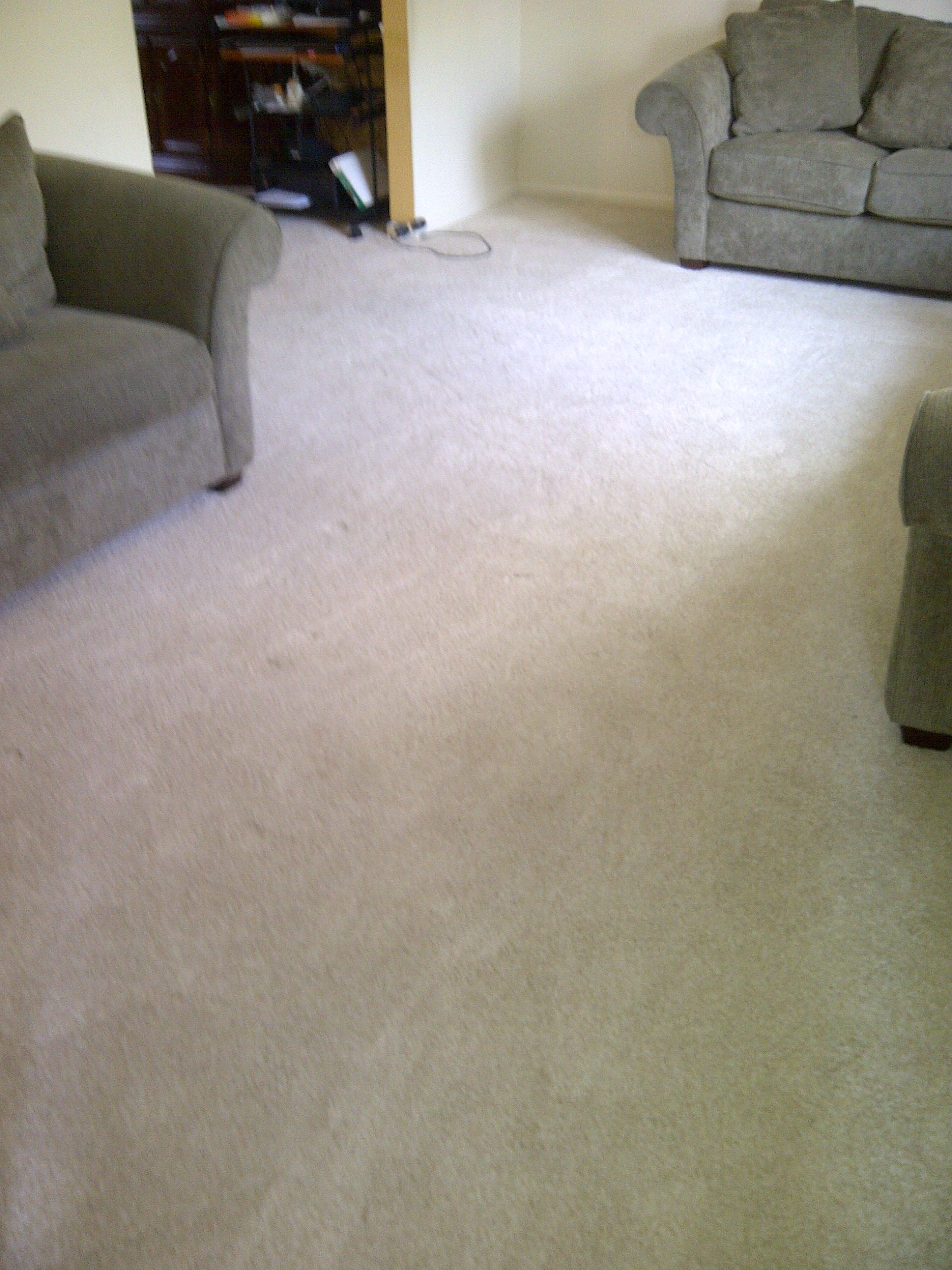 Mohawk Carpet Installed In Living Room And Dining Cincinnati Ohio By Home Based