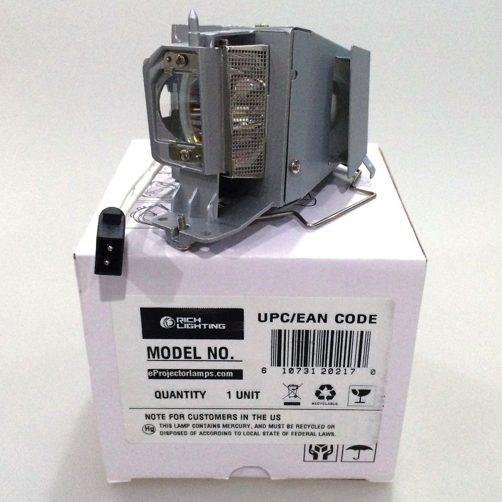 Details about Replacement Projector Lamp BL-FP190E with