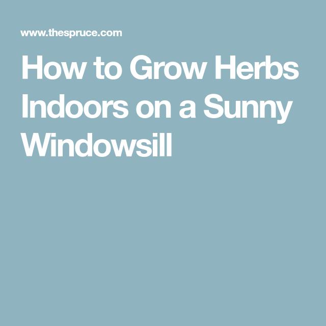 How To Grow A Windowsill Herb Garden Growing Herbs Best 640 x 480