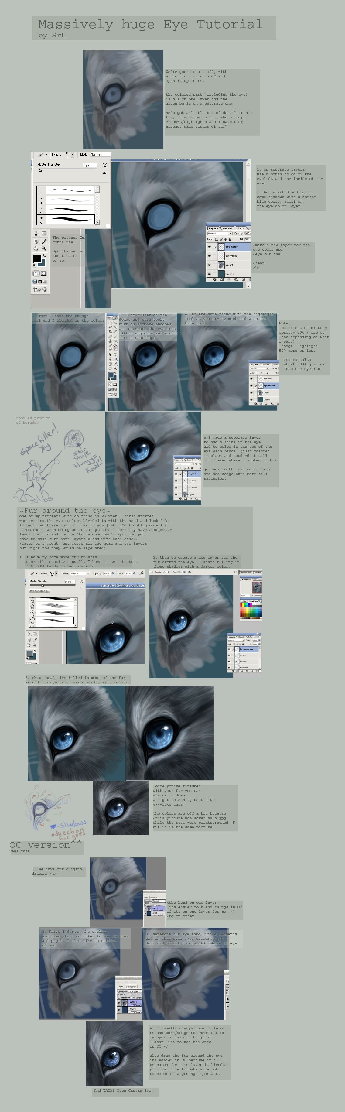 Scroll Down To Read : How To Draw A Wolf Photoshop By John Allen