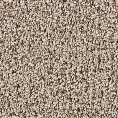 Martha Stewart Living Balmoral Color Wild Turkey Tonal 12 Ft Carpet 845hdms219 Frieze Carpet Living Room Carpet Diy Carpet