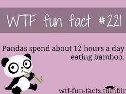 WOW that explains a lot!!