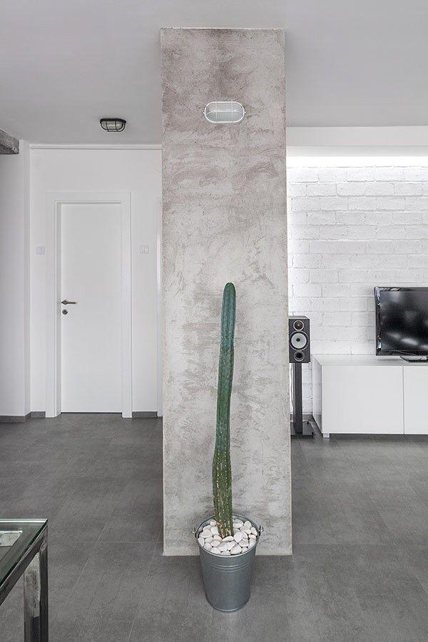 Kaktus in ein schwarz-weiß Wohnzimmer Gestaltung Wohnung - wohnzimmer schwarz wei